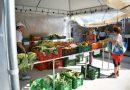 Biomassa de banana é a novidade da Feira da Agricultura Familiar