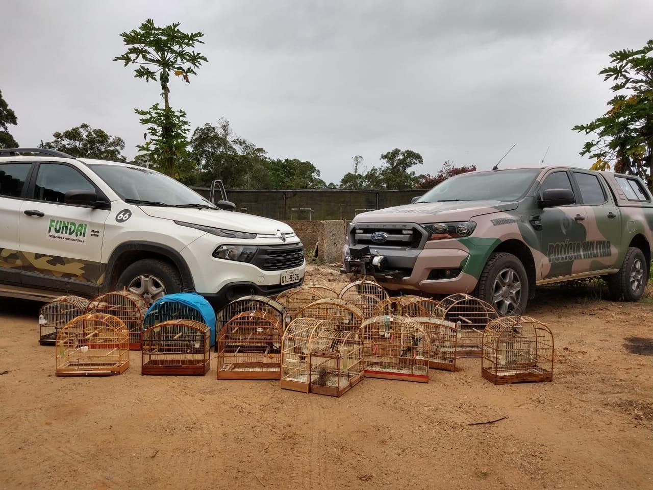 Após denúncia, Fundai e Polícia Ambiental resgatam 21 pássaros silvestres